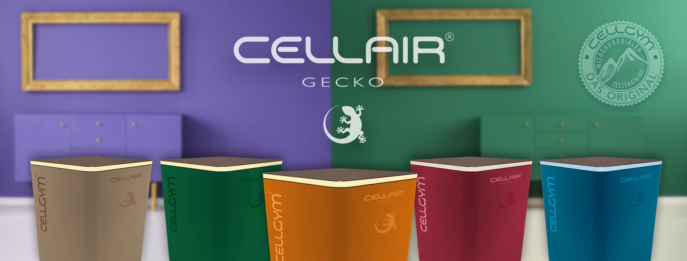 CellAir GECKO – so individuell wie Ihr Zuhause … Cellgym CellAir Gecko fuer Zuhause 1