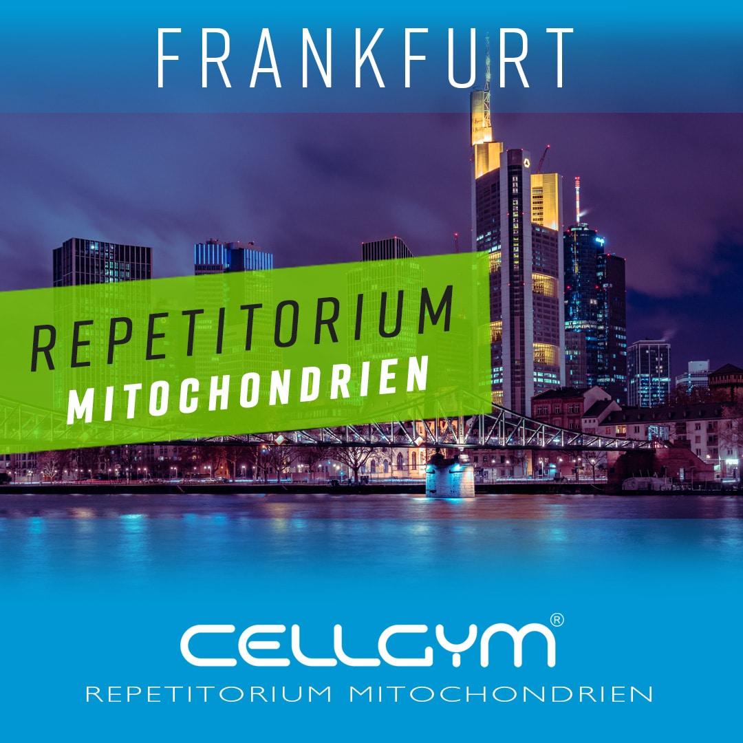 Fortbildungen Cellgym Repetitorium Frankfurt